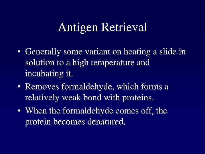 Antigen Retrieval
