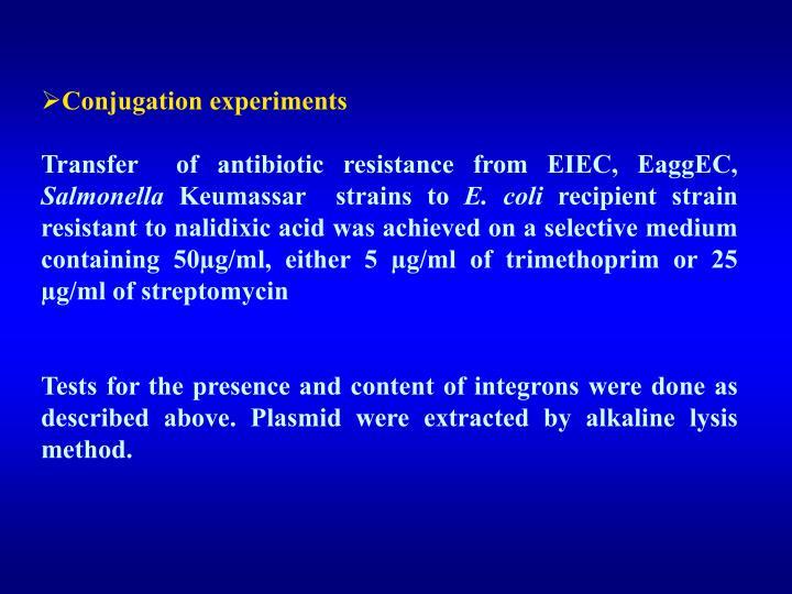 Conjugation experiments