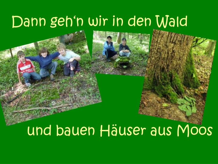 Dann geh'n wir in den Wald