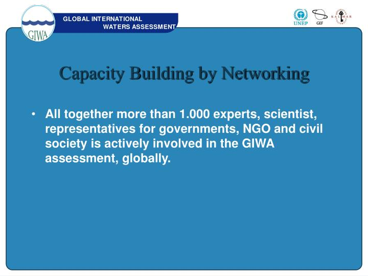 Capacity Building by Networking