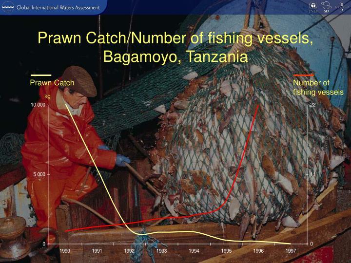 Prawn Catch/Number of fishing vessels, Bagamoyo, Tanzania