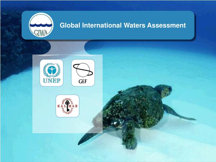 Global International Waters Assessment