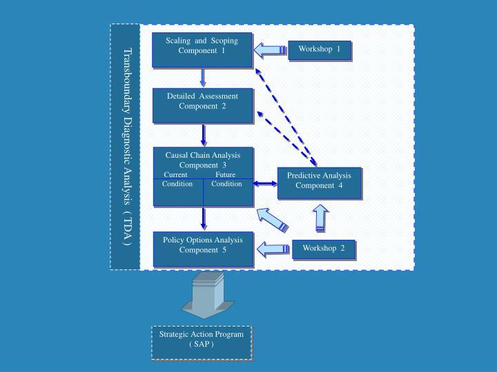 Transboundary Diagnostic Analysis  ( TDA )