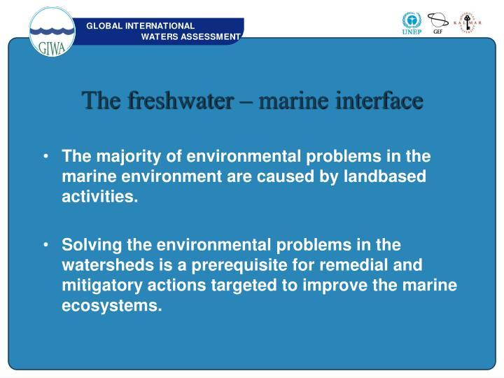 The freshwater – marine interface