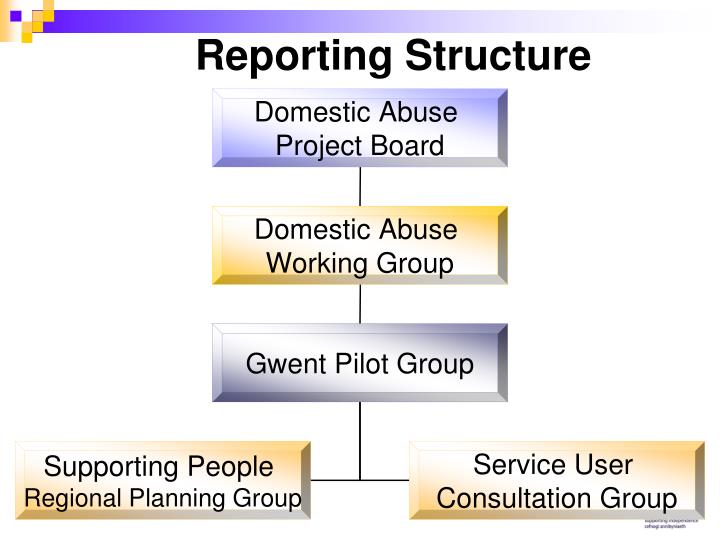 Reporting Structure