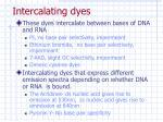intercalating dyes