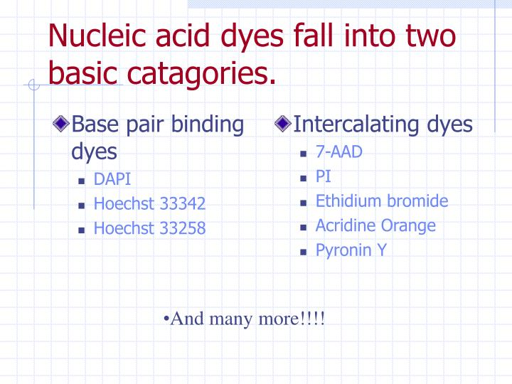 Base pair binding dyes