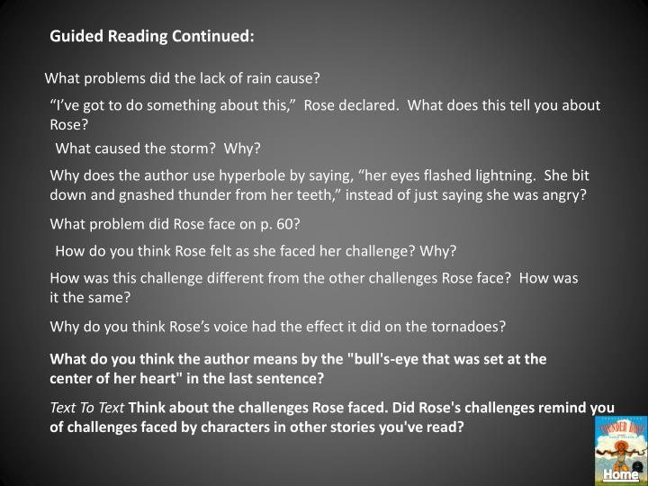 Guided Reading Continued: