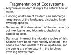 fragmentation of ecosystems