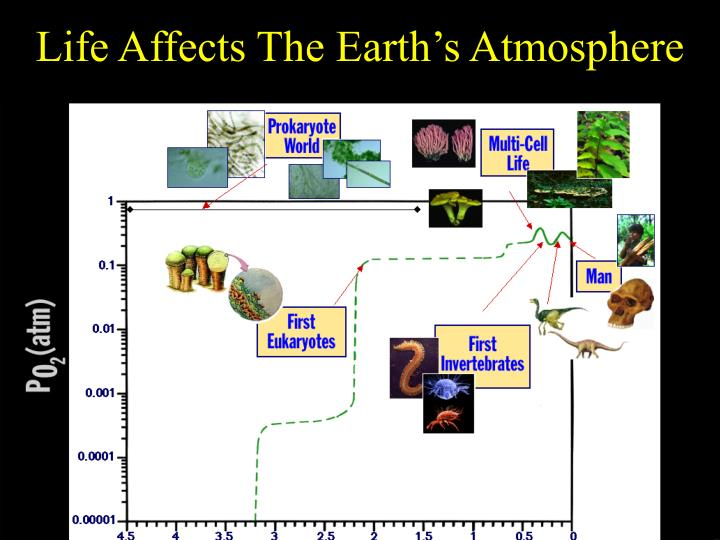 Life Affects The Earth's Atmosphere