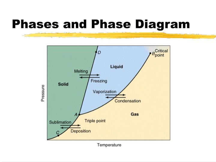 Phases and Phase Diagram