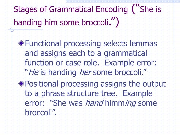 Stages of Grammatical Encoding