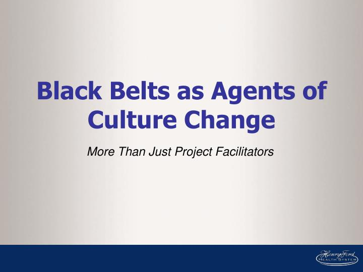 Black Belts as Agents of Culture Change