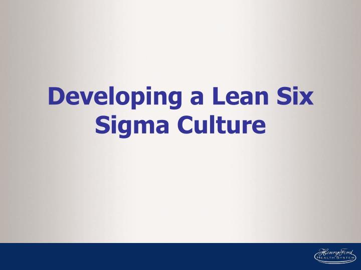 Developing a Lean Six Sigma Culture