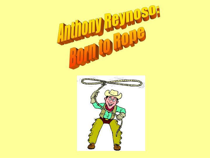 Anthony Reynoso: