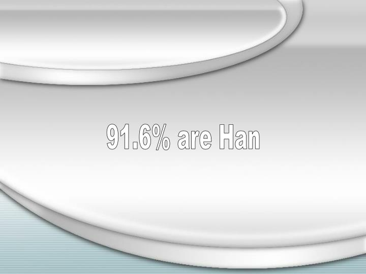 91.6% are Han