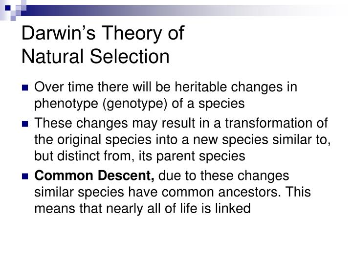 the transformation process in organisms in what is darwins theory of evolution by ker than N o soone r said than don  technology fostered and encouraged a fragmenti ng process,  evolutioll derr ick de ker khove of the mcluhan institute in.