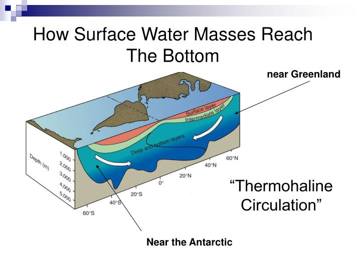 How Surface Water Masses Reach The Bottom