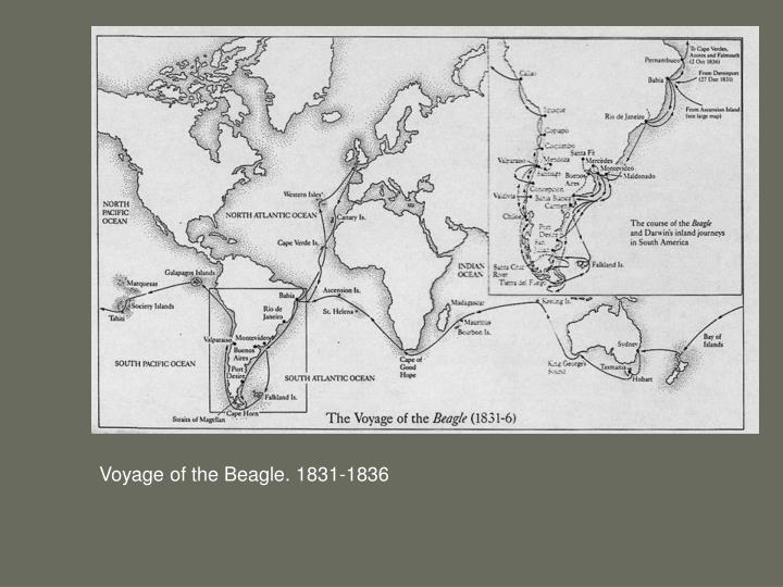 Voyage of the Beagle. 1831-1836