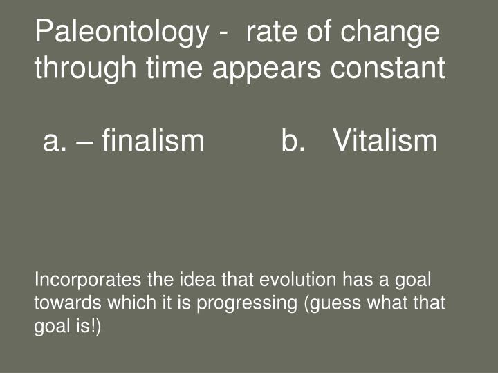 Paleontology -  rate of change through time appears constant