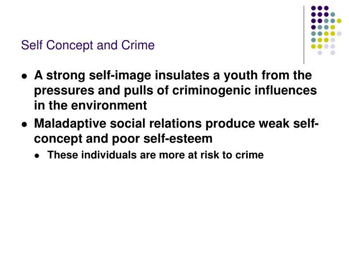 Self Concept and Crime