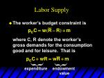 labor supply1
