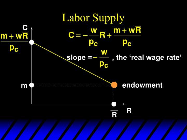 Labor Supply