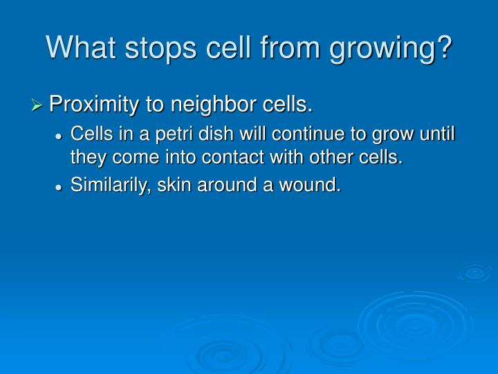 What stops cell from growing?