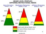 grade level profiles differing instructional needs