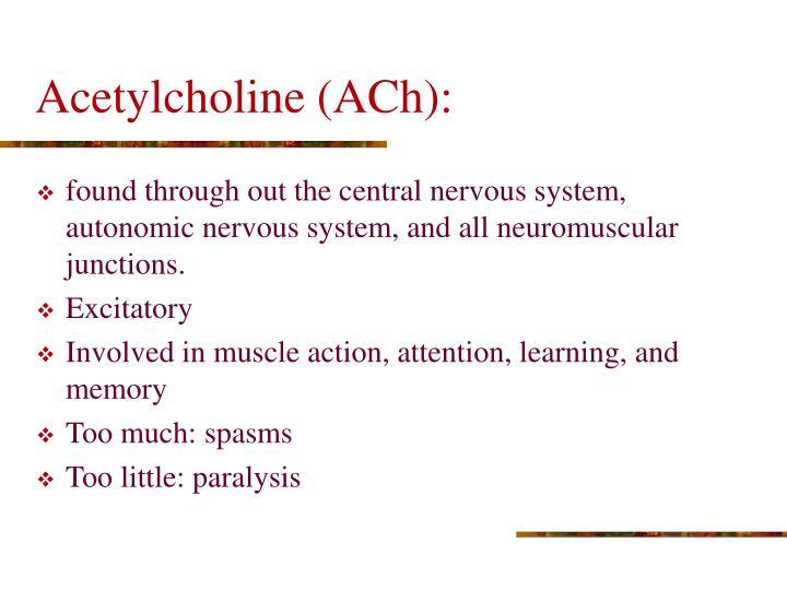 Acetylcholine (ACh):