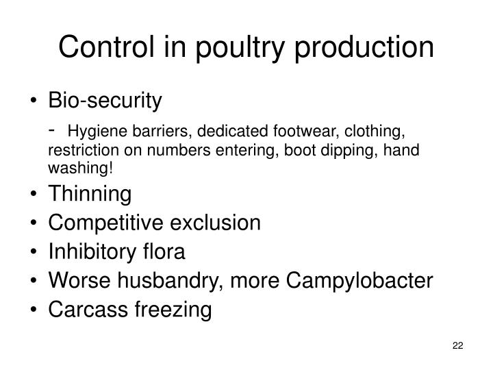 Control in poultry production