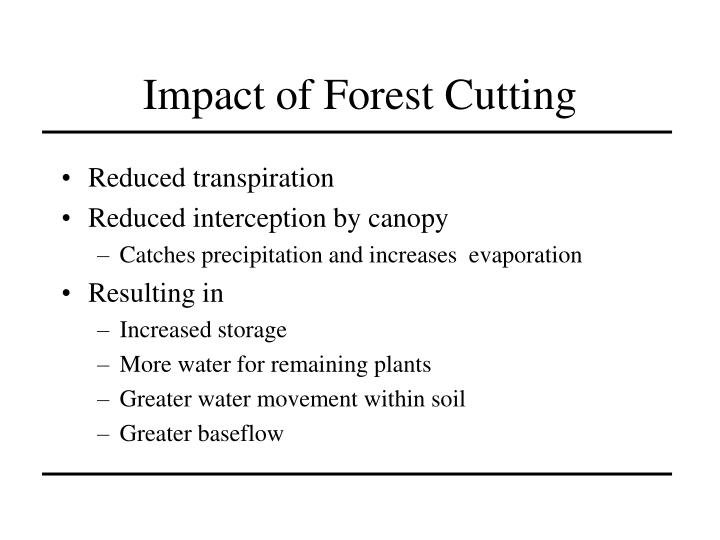 Impact of Forest Cutting