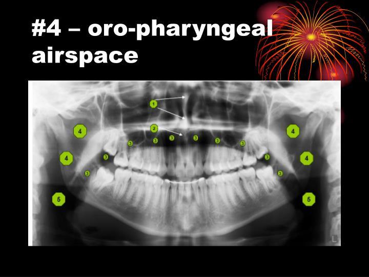 #4 – oro-pharyngeal airspace