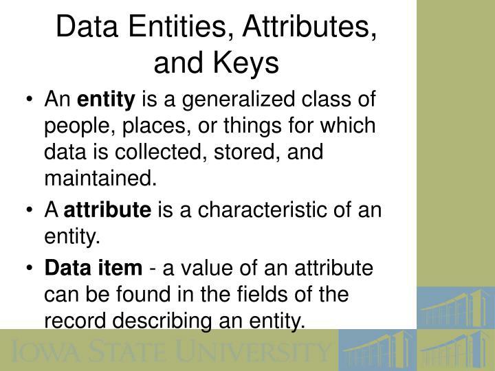 Data Entities, Attributes,