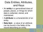 data entities attributes and keys