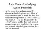 ionic events underlying action potentials2