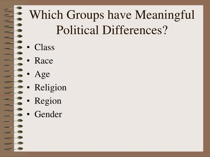 Which groups have meaningful political differences