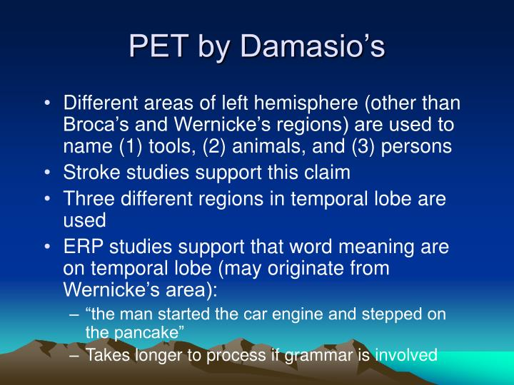 PET by Damasio's