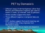 pet by damasio s
