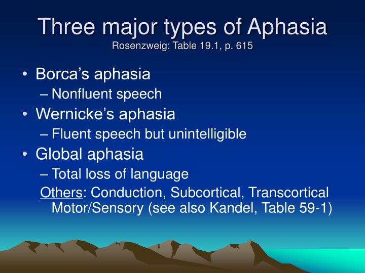 Three major types of Aphasia