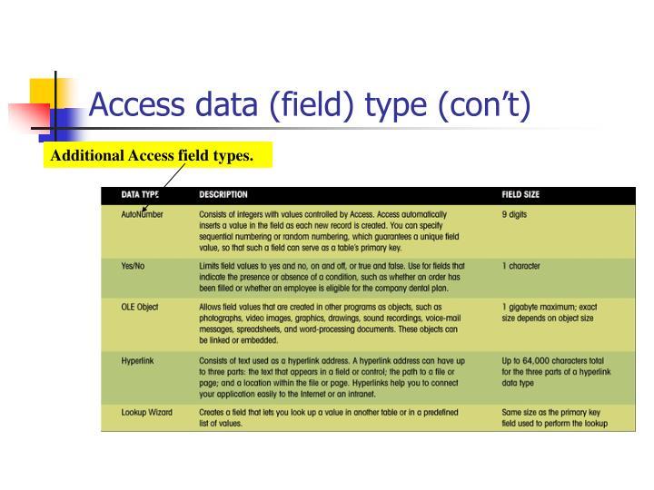 Access data (field) type (con't)