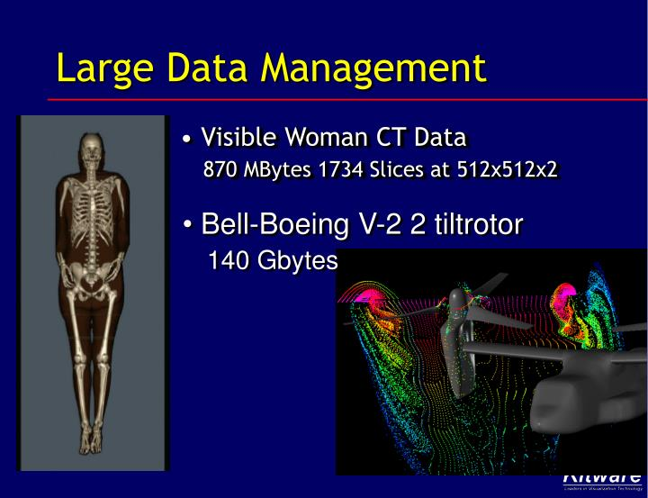 Large Data Management