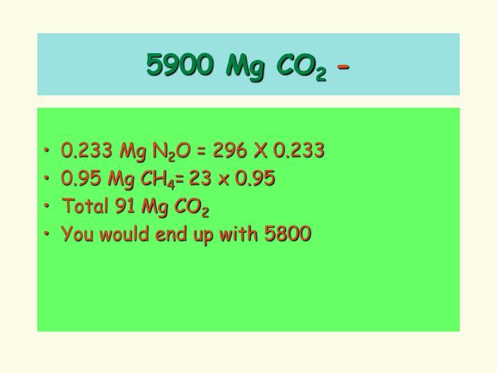 5900 Mg CO