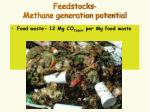 feedstocks methane generation potential