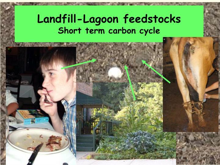 Landfill-Lagoon feedstocks