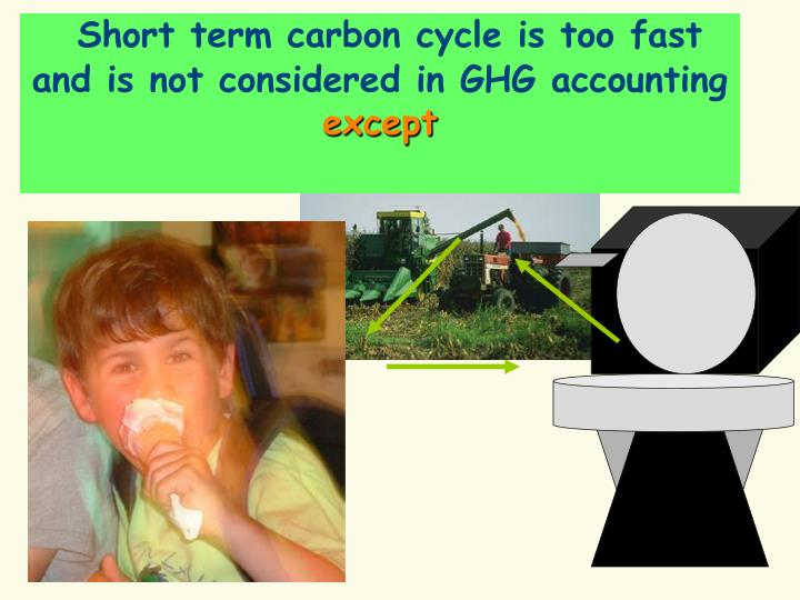 Short term carbon cycle is too fast