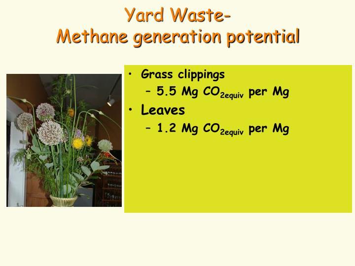 Yard Waste-