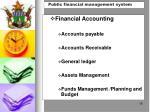 public financial management system2