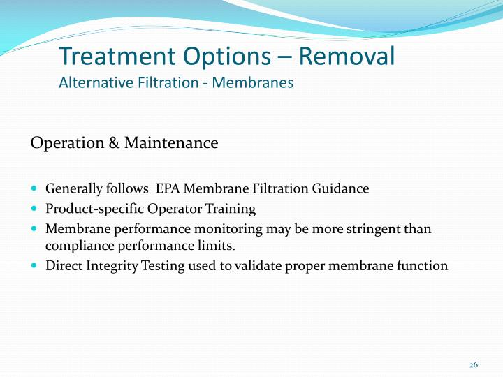 Treatment Options – Removal
