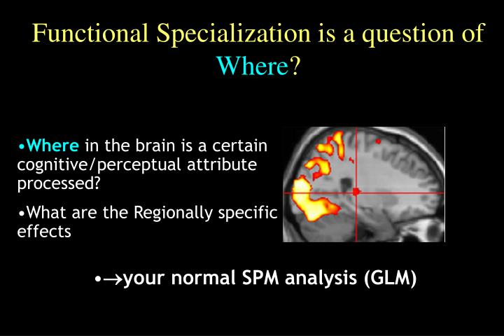 Functional Specialization is a question of